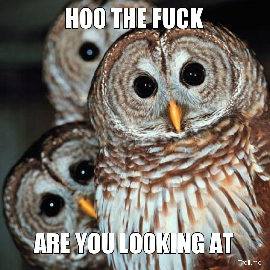 hoo-the-fuck-are-you-looking-at